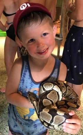 Lincoln snake